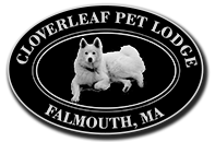 Cloverleaf Pet Lodge Logo